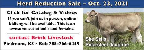 Brink Livestock Ad